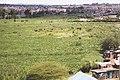 NAIROBI DAM.jpg