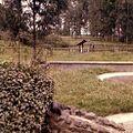 Nairobi National Park (3200719931).jpg