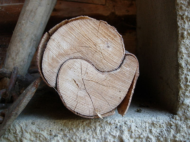 Nat%C3%BCrlich gewachsenes yin-yang-.jpg