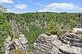 Nationalpark Sächsische Schweiz IMG 7874WI.jpg