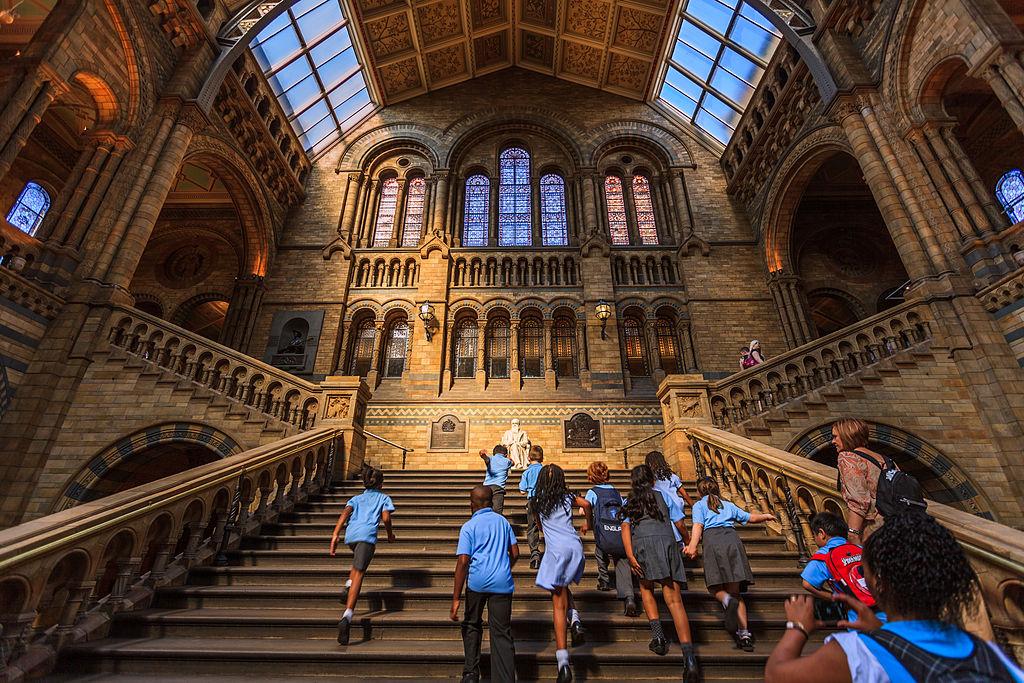 Le gigantesque et splendide musée d'histoire naturelle de Londres - Photo de Chiugoran