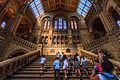 Natural History Museum UK.jpg