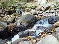 Near Amicalola falls 9-11-2005 - panoramio.jpg