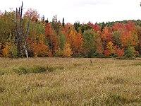 New England Autumn (3982576605).jpg