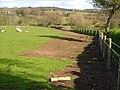 New fence near Barnecourt... - geograph.org.uk - 163052.jpg