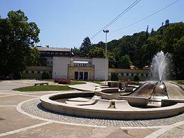 Niška Banja