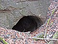 Noland Railroad Tunnel (Tunnel Hill, Coshocton County, Ohio, USA) 4 (30811106406).jpg