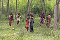 Nomadic people of Pakistan living in the forest pick wood for for burning under the hearths to cook food.jpg