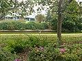 Norfolk Azalea Garden 2012-09-30 21-44-55.jpg