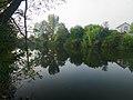 Novosilky (Vyshhorod) lake3.JPG