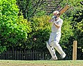 Nuthurst CC v. Henfield CC at Mannings Heath, West Sussex, England 062.jpg
