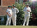 Nuthurst CC v. Henfield CC at Mannings Heath, West Sussex, England 067.jpg