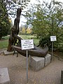 OLYMPUS DIGITAL CAMERA - panoramio (52).jpg