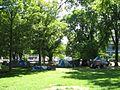 Occupy Christchurch NZ December 2011 tents Hagley Park.jpg