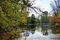Oczko wodne przy moście Fordońskim. - panoramio.jpg
