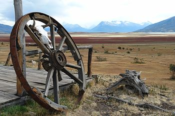 On the road to El Calafate in Patagonia.