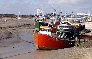 Leigh-on-Sea Human settlement in England