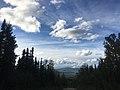 Old Ridge Trail in Alaska in August.jpg