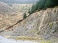 Old quarry on forestry land beneath Llechwedd Llwyd - geograph.org.uk - 914719.jpg