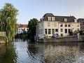Paardenwed Haarlem.jpg