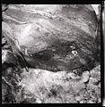 Paolo Monti - Serie fotografica - BEIC 6337150.jpg