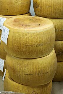 Parmigiano-Reggiano Type of hard Italian cheese