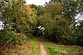 Path for the disabled at Aston Rowant Nature Reserve - geograph.org.uk - 1502161.jpg