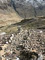 Path on Great Gable - geograph.org.uk - 770510.jpg