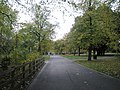 Path running north to south in an autumnal Victoria Park - geograph.org.uk - 1027605.jpg