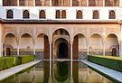 Patio de los Arrayanes detail Alhambra Granada Spain.jpg