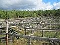 Paulding Stockyard - panoramio.jpg