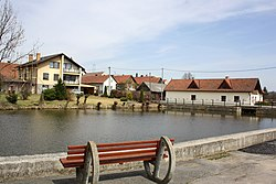 Pavlínov, common pond. 2.jpg