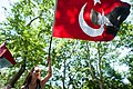 Peaceful daytime demonstrations in Taksim park. Events of June 3, 2013.jpg