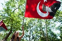 A woman waves a flag of Atatürk at Gezi Park.