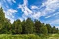 Pereslavsky District, Yaroslavl Oblast, Russia - panoramio (25).jpg