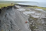 Permafrost in Herschel Island 009.jpg