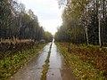 Permskiy r-n, Permskiy kray, Russia - panoramio (741).jpg