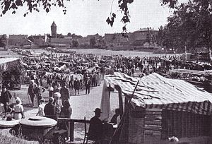 Znamensk, Kaliningrad Oblast - Until World War II the town of Wehlau was known mostly for its horse markets