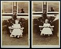 Photographer's reflection - cartes de visite by George Bell, Carlisle (14136864963).jpg