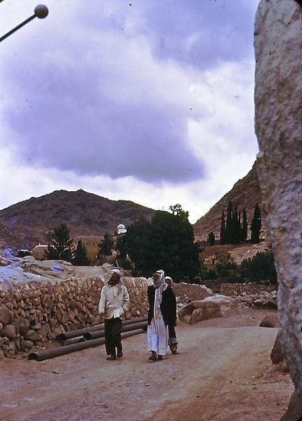 גן-שמואל-טיול למדבר סיני 1968