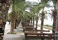 PikiWiki Israel 29589 Architecture of Israel.jpg