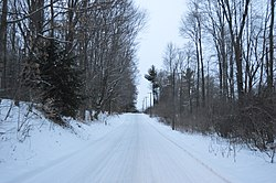 Snowy road through woodlands east of Hartstown