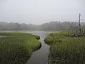 Pleasant River August 2012 Aviva Rahmani.jpg
