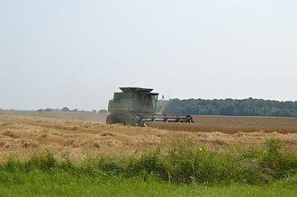 Pleasant Township, Hancock County, Ohio - Harvesting wheat outside of McComb