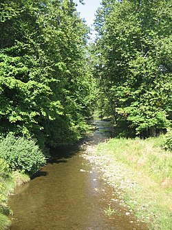 Plunketts Creek near mouth.JPG