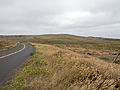 Point Reyes Francis Blvd.jpg