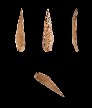 Epipaleolithic - Azilian points, microliths from Epipaleolithic northern Spain and southern France.