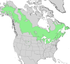 Populus balsamifera range map 2.png