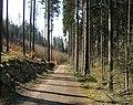 Prague Kunraticky Forest Road.jpg