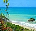 Praia de arapuca paraiba brasil.jpg
